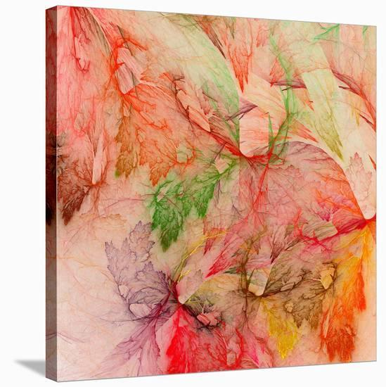 Colorful Abstract Leaf Collage--Stretched Canvas Print