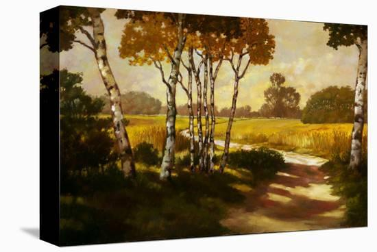 Country Walk II-Graham Reynolds-Stretched Canvas Print