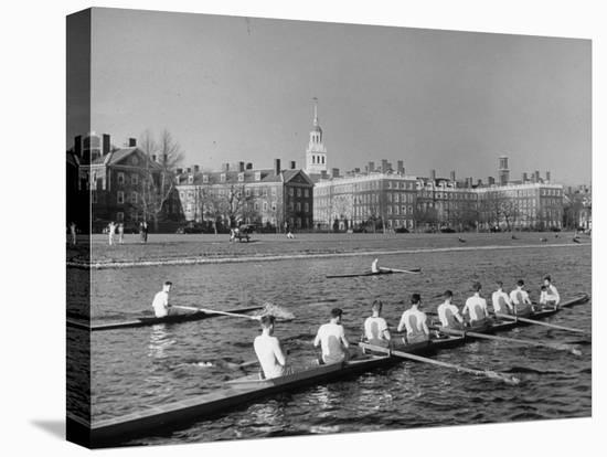 Crew Rowing on Charles River across from Harvard University Campus-Alfred Eisenstaedt-Stretched Canvas Print