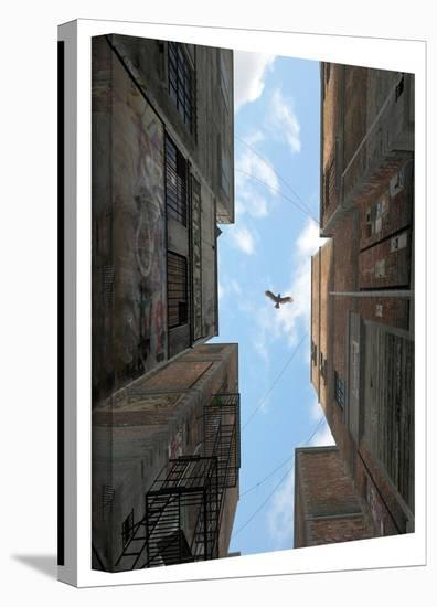 Cynthia Decker 'Afternoon Alley' Gallery Wrapped Canvas-Cynthia Decker-Gallery Wrapped Canvas