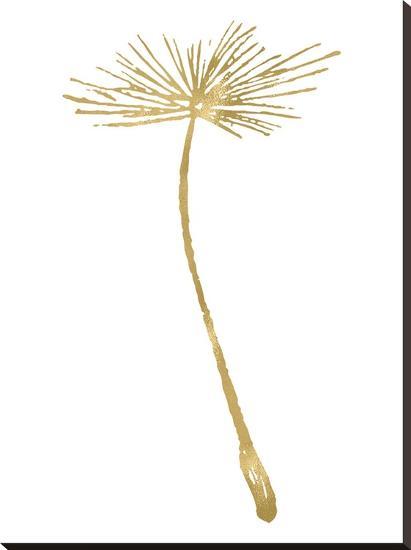 Dandelion 2 Golden White-Amy Brinkman-Stretched Canvas Print