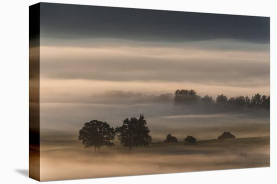 Dense Fog Over The Moos-Nina Pauli-Stretched Canvas Print