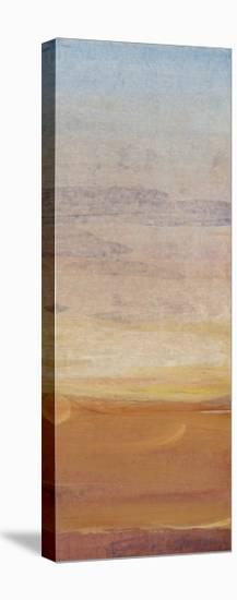 Desert View II-Tim OToole-Stretched Canvas Print