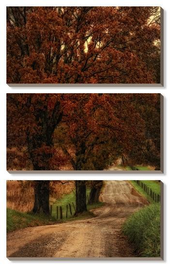 Dirt Road Canvas Art Set Danny Head Art Com
