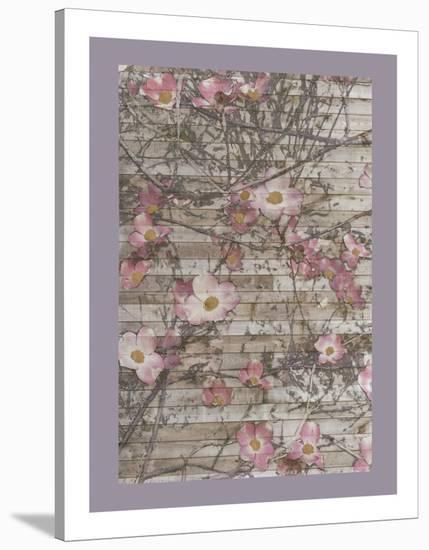 Dogwood Dance I-Jennifer Goldberger-Stretched Canvas Print