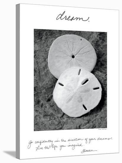 Dream-Wild Apple Portfolio-Stretched Canvas Print
