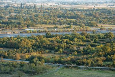 Duruji river, cow, forest, evening, road, rural, Kakheti-Sergey Orlov-Stretched Canvas Print
