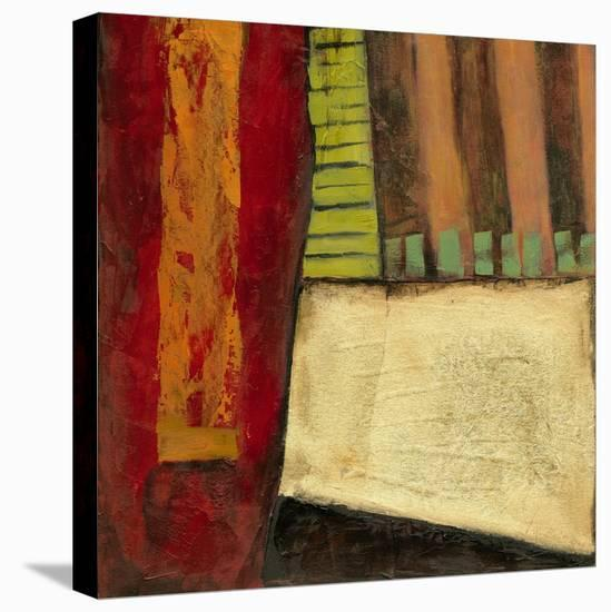 Dynamic Abstraction II-Jennifer Goldberger-Stretched Canvas Print