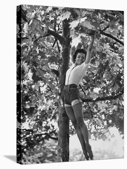 Eartha Kitt Playing in the Tree-Gordon Parks-Stretched Canvas Print