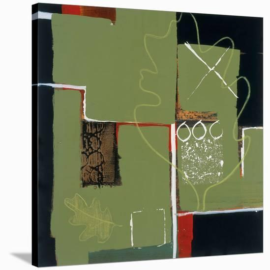 Eco Dream I-Leslie Bernsen-Stretched Canvas Print