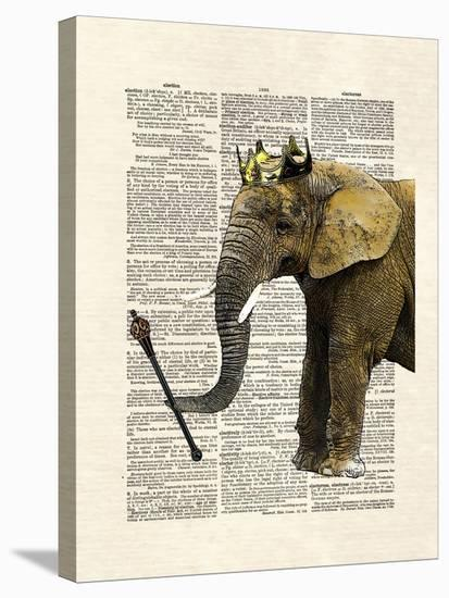 Elephant King-Matt Dinniman-Stretched Canvas Print