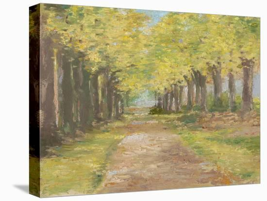 Fall Path III-Ethan Harper-Stretched Canvas Print