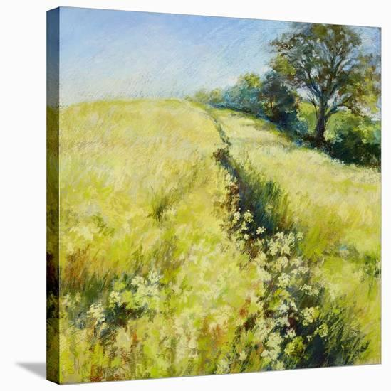 Fields of Gold-Nel Whatmore-Stretched Canvas Print