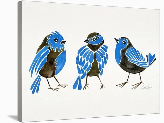 Finches Blue-Cat Coquillette-Stretched Canvas Print