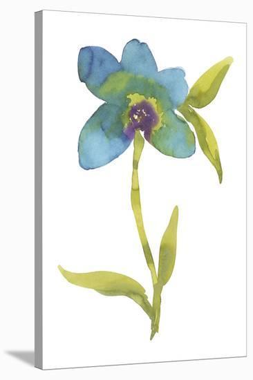 Fiore Blu III-Sandra Jacobs-Stretched Canvas Print