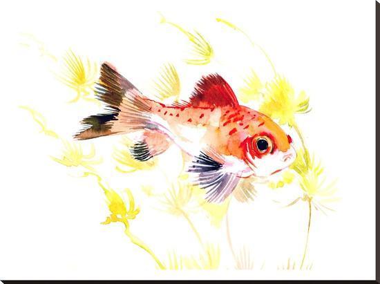 Fish Aquarium Nursery-Suren Nersisyan-Stretched Canvas Print