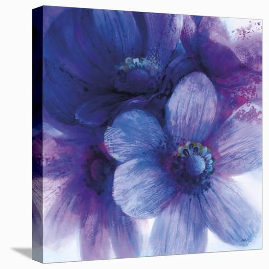 Floral Intensity II-Nick Vivian-Stretched Canvas Print