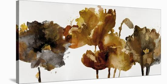 Floral Rhumba II-Tania Bello-Stretched Canvas Print