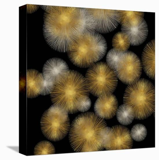 Flourish in Gold and Silver-Abby Young-Stretched Canvas Print