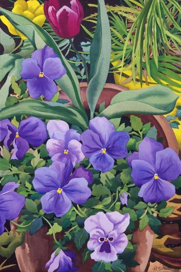 Flowerpots with Pansies, 2007-Christopher Ryland-Stretched Canvas Print
