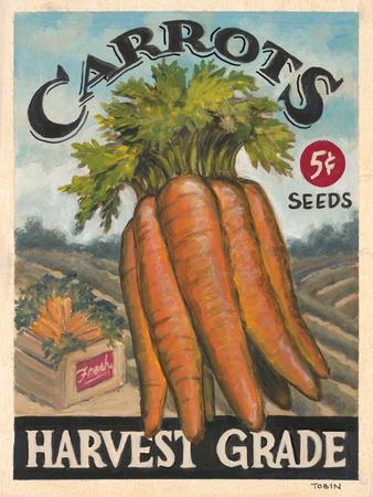 Fresh Carrots-K^ Tobin-Stretched Canvas Print
