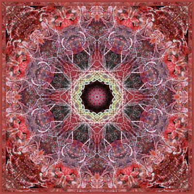 Frosted Leafes in the Forest Mandala Red Toned-Alaya Gadeh-Stretched Canvas Print