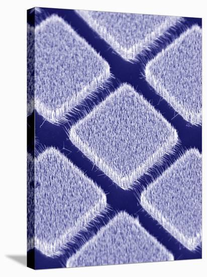 Gallium Nitride Nanowires, SEM-Peidong Yang-Stretched Canvas Print