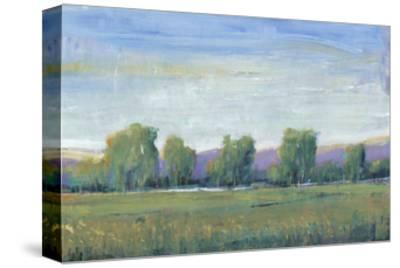 Glen Haven I-Tim OToole-Stretched Canvas Print