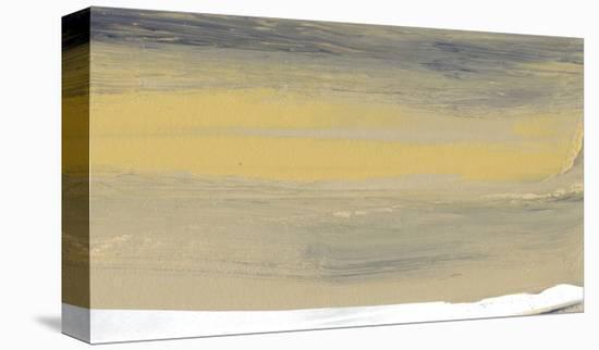 Glide VIII-Sharon Gordon-Stretched Canvas Print