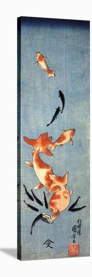 Gold Fish-Kuniyoshi Utagawa-Stretched Canvas Print