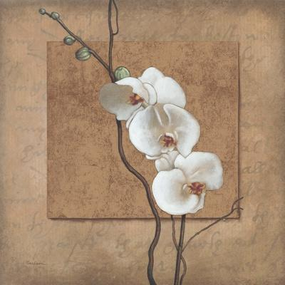 Golden Orchid I-Lee Carlson-Stretched Canvas Print