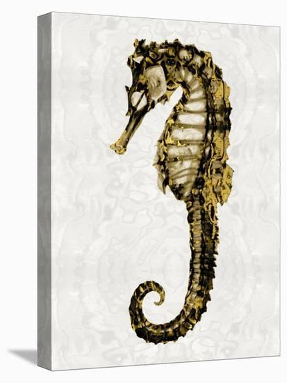 Golden Sea Horse I-Melonie Miller-Stretched Canvas Print