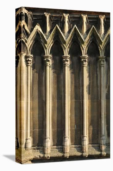 Gothic Cathedral Detail Paris--Stretched Canvas Print