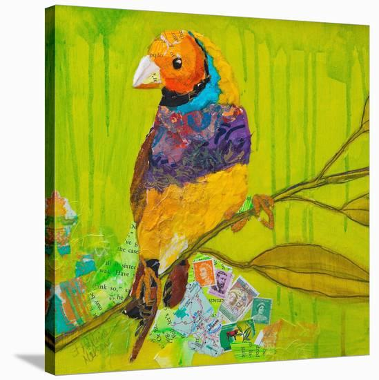 Gouldian Finch--Stretched Canvas Print