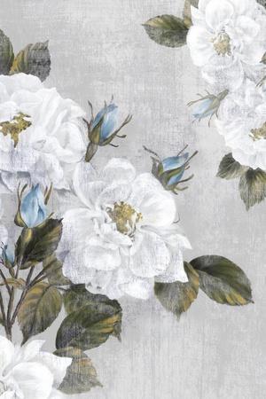 Graceful II-Eva Watts-Stretched Canvas Print