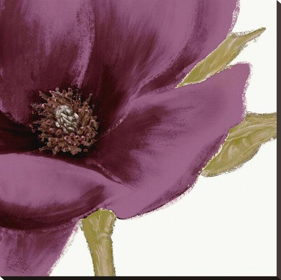 Grandiflora Blush I-Linda Wood-Stretched Canvas Print