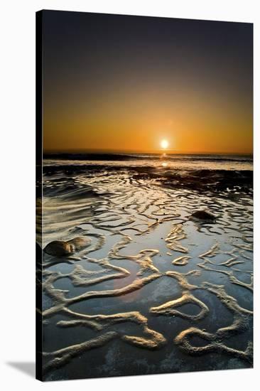 Halcyon-Ryan Hartson-Weddle-Stretched Canvas Print