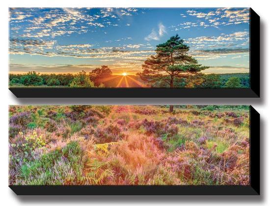 Heathland Sunset-Assaf Frank-Canvas Art Set