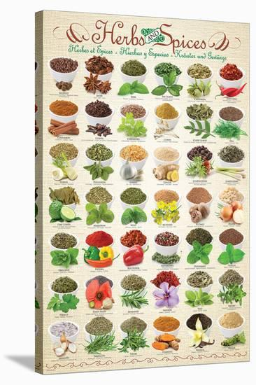 Herbs & Spices--Stretched Canvas Print