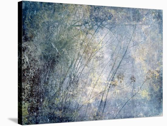 High Sierra I-Hope Bainbridge-Stretched Canvas Print