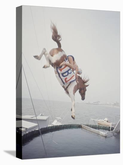 Horse with LBJ Banner Diving into the Water at Atlantic City-Art Rickerby-Stretched Canvas Print