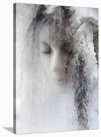 Ice Queen-Jeffrey Hummel-Stretched Canvas Print