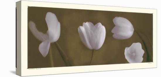 Illuminating Tulips IV-Judy Mandolf-Stretched Canvas Print