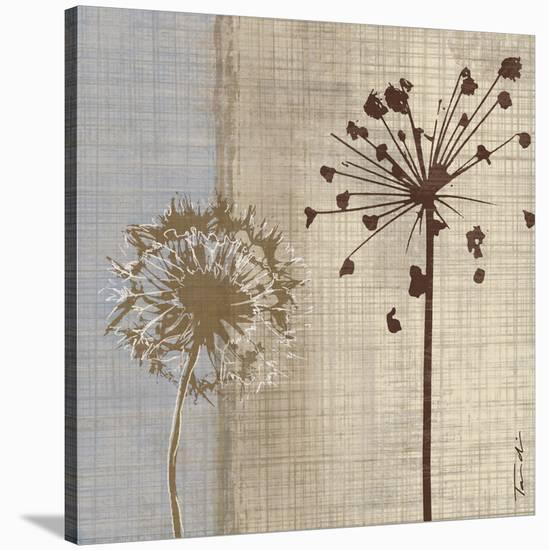 In the Breeze I-Tandi Venter-Stretched Canvas Print