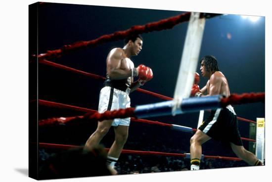 Ing Game Between Mohammed Ali and Alfredo Evanglista in Washington May 16, 1977--Stretched Canvas Print