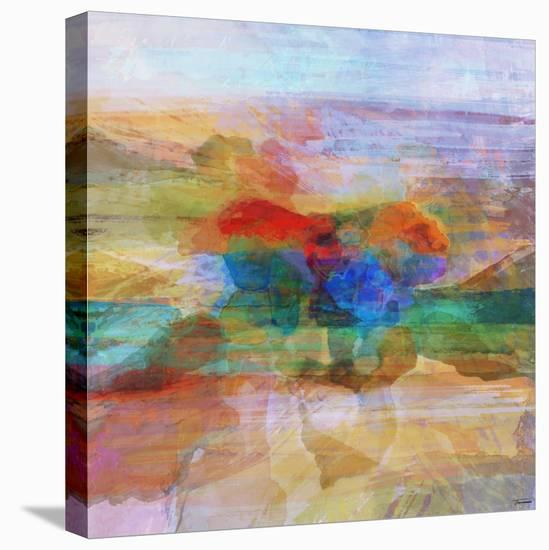 Inspiration VIII-Michael Tienhaara-Stretched Canvas Print