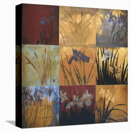 Iris Nine Patch II-Don Li-Leger-Stretched Canvas Print