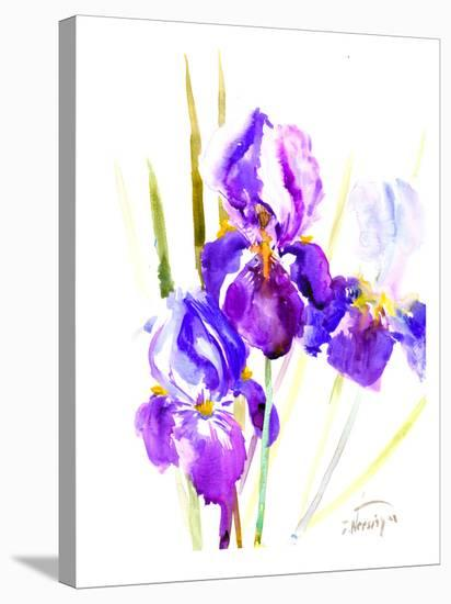 Irises (2)-Suren Nersisyan-Stretched Canvas Print