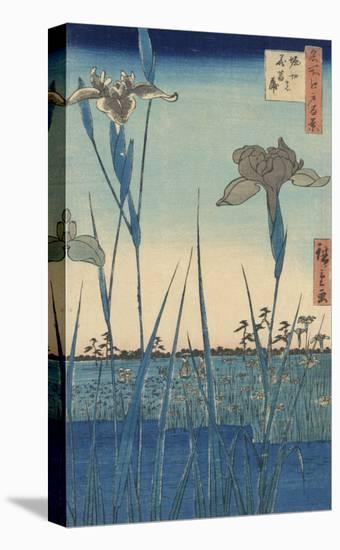 Irises at Horikiri-Ando Hiroshige-Stretched Canvas Print