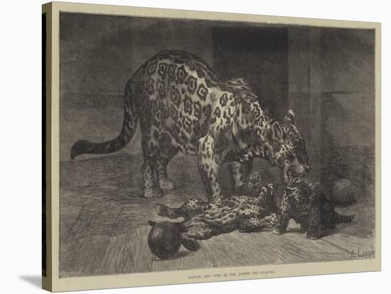 Jaguar and Cubs at the Jardin Des Plantes-Auguste Andre Lancon-Premier Image Canvas